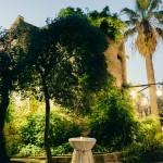 Giardino, torre e palma al crepuscolo